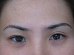 Eyebrow Embroidery Specialist