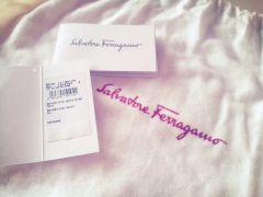 Salvatore Ferragamo Jordane Handbag (Brand New, FOR SALE!)